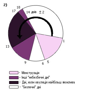 Регулярний менструальний цикл